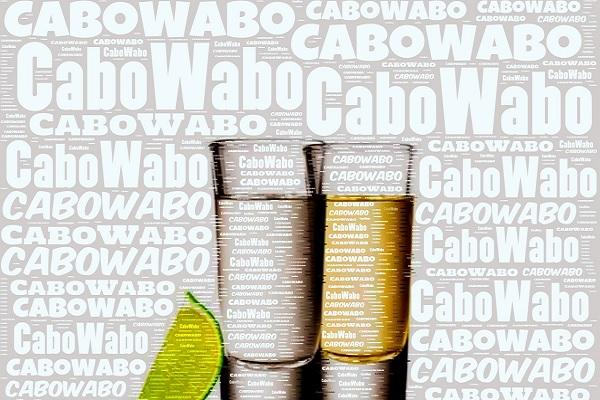 cabo san lucas cruise, Cabo Wabo Cantina, nick fong, los cabos agent, greg hixon, remexblogs