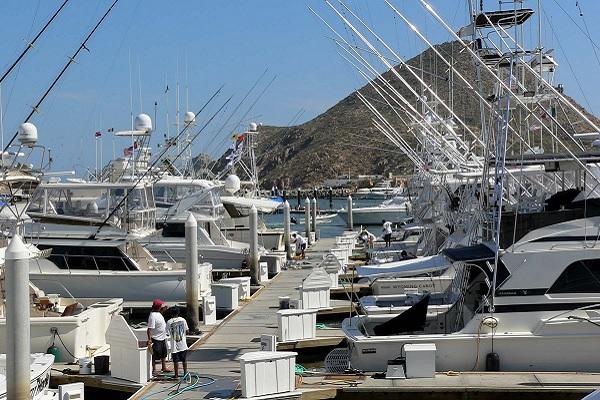 Cabo San Lucas fishing, los cabos real estate, cabo real estate, cabo san lucas real estate, nick fong
