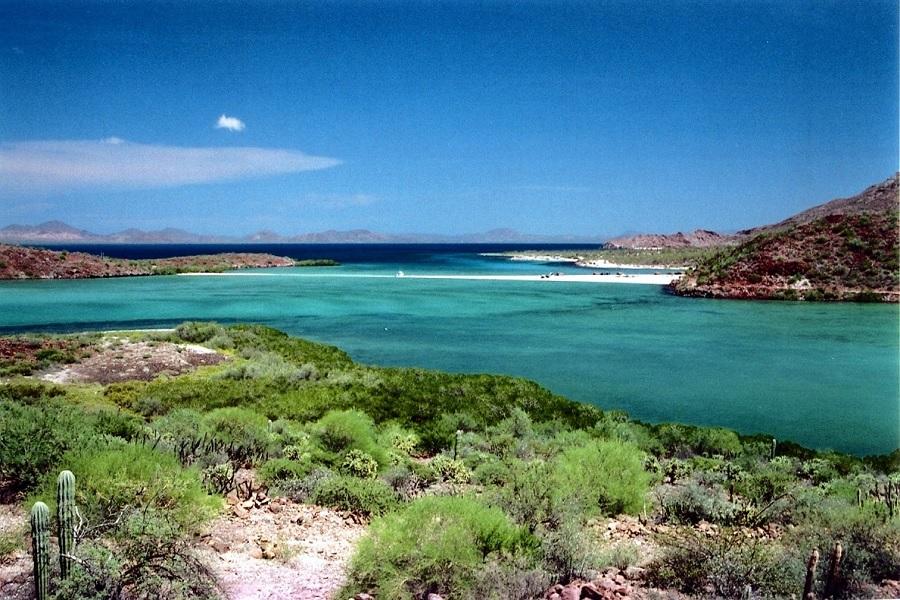 Cabo eco-tour, vizcaino Biosphere Reserve, los cabos agent, nick fong